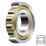 SCHAEFFLER GROUP USA INC NU2210-E-M1A-C3 Rolamentos de rolos cilíndricos